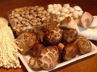 Бердянский сыроед отравился сырыми грибами